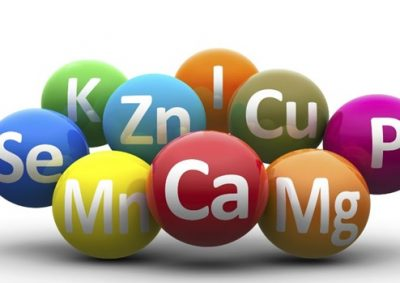 minerales-nutricion