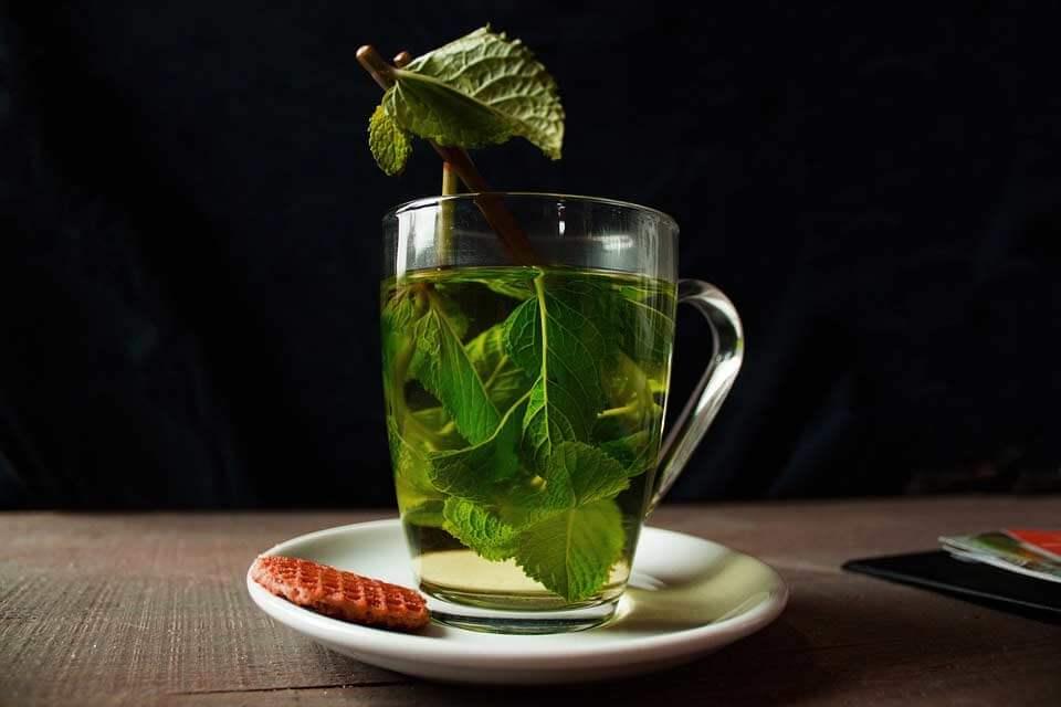 Te verde para una dieta perfecta