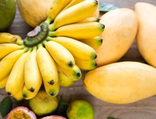 Mango y plátano con salsa de algarroba
