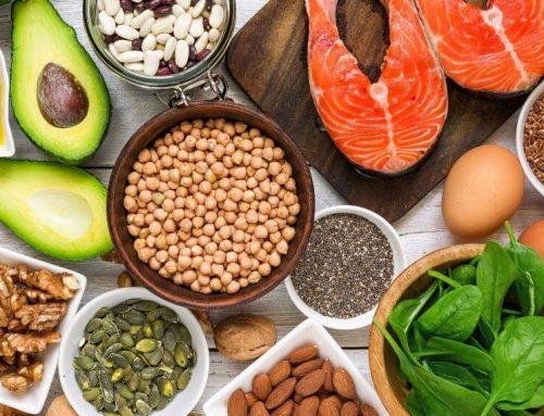 Los ácidos grasos: Metabolismo y funciones.