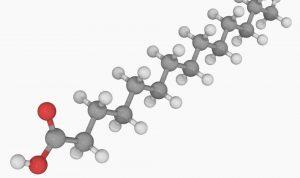 ácidos grasos moléculas
