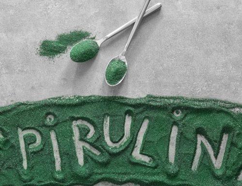 La Espirulina, un alga como fuente de proteínas