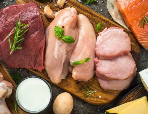 ¿Qué es el valor biológico de la proteina?
