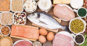 Alimento origen animal proteicos