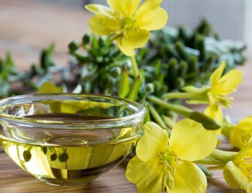 El Aceite de Onagra: usos y propiedades