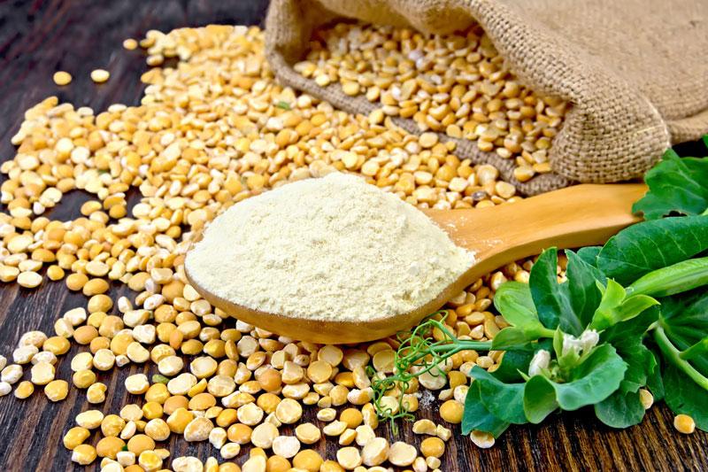 Que es la proteína de guisante