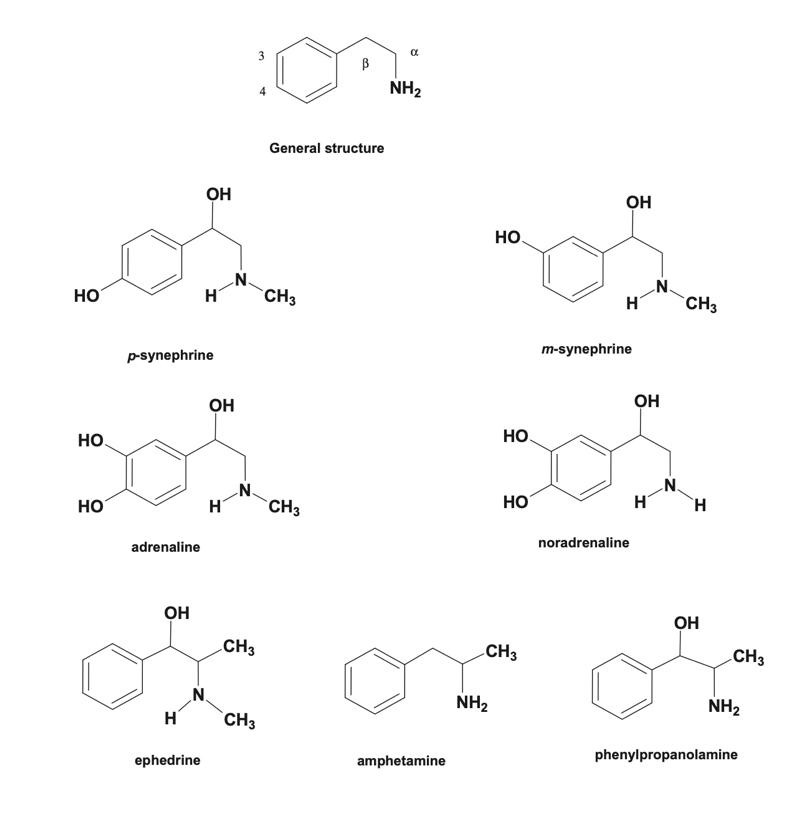 Compuestos con estructuras químicas similares con la sinefrina