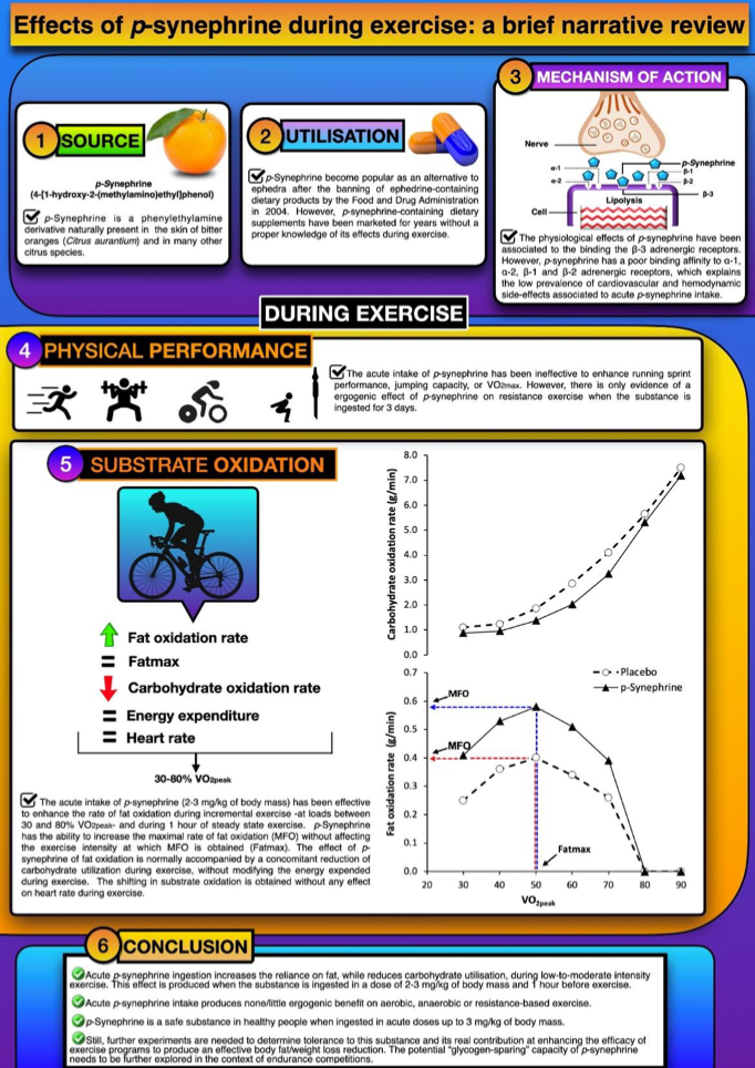 Resumen de fuente, utilización, mecanismos de acción, rendimiento deportivo y conclusiones de la p-sinefrina.