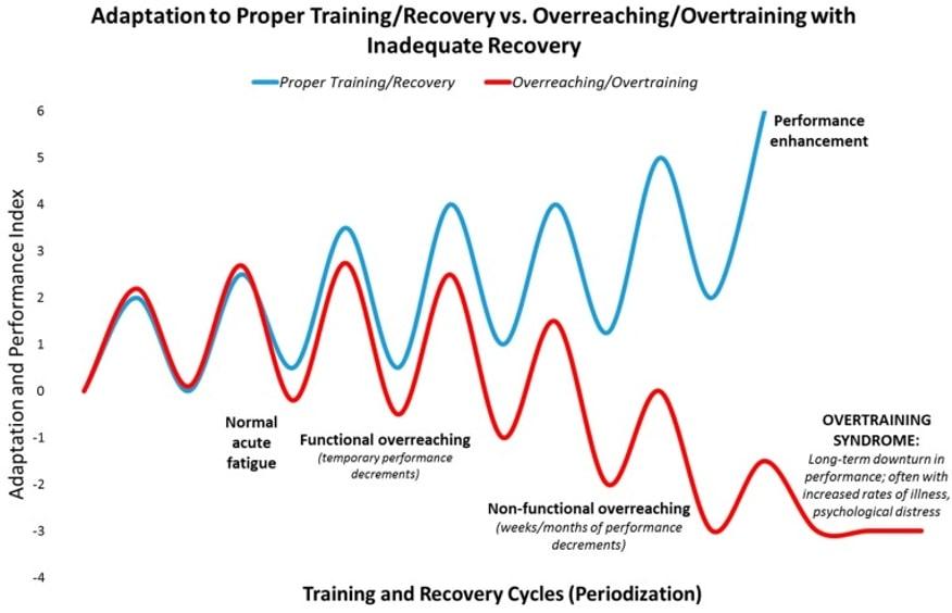 Adaptación al entrenamiento