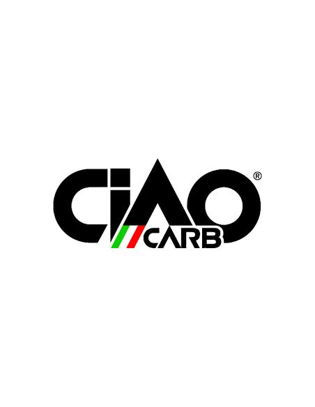 Logo CIAO CARB