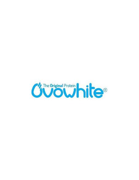 Logo OVOWHITE